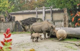 zoogastronomie